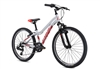 Fuji Dynamite 24 Sport Kids Mountain Bike Silver 2021 - We are open, restocked and ready - shop in-store and online safely today!