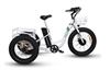 Emojo Caddy Fat Tire 500W Electric Trike Bike - We are open, restocked and ready - shop in-store and online safely today!