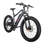 CIVI Predator Fat Tire 500W Electric Bike Matte Platinum Grey - Hot Summer Sale NOW!